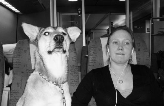 Efter att jag fått min macka på tåget så fick jag sitta mellan Fru K och morsan resten av tågresan - de tyckte att jag spanade oroväckande mycket mot bistrovagnen.