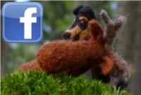 Dobra da Cobra på Facebook