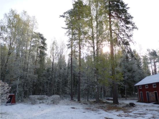 Förra veckan var det Värmland men nu är det Kalland igen. Kalland är Kalland, så är det bara.