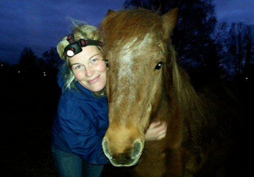 Om jag var häst så skulle jag vara som Horror. Gammal, slug, lite sur och dra undan snudan när morso kommer och slabbidaskar.