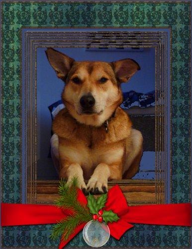 Hoppas att ni får en lika god, mättande och fridfull jul som jag.